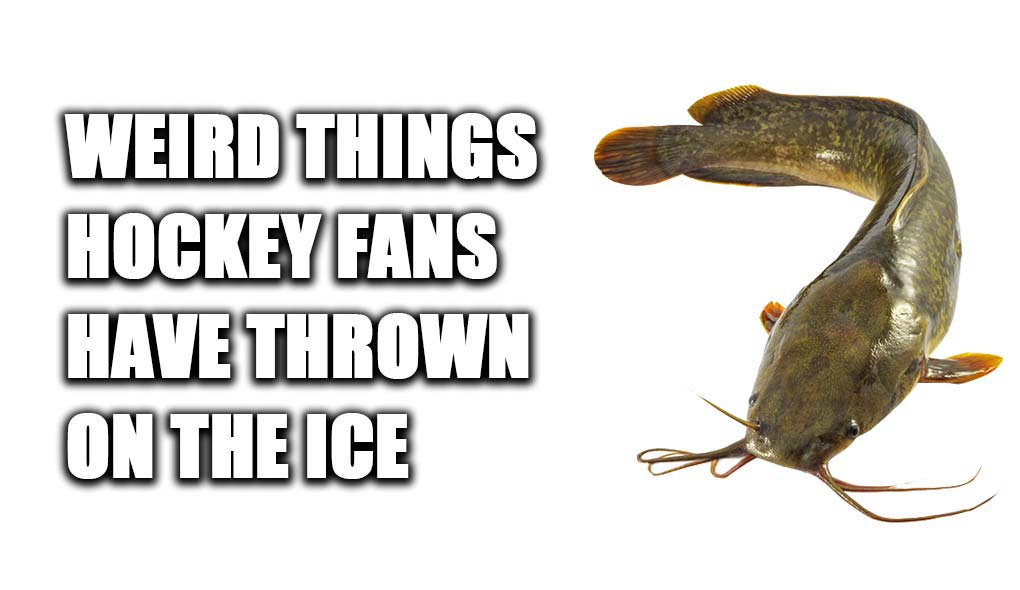 Weird things hockey fans have thrown on the ice