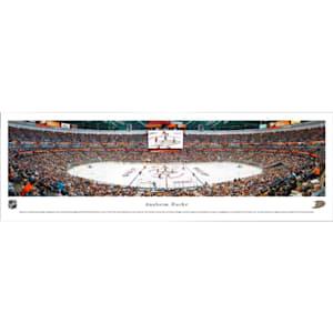 Frameworth Anaheim Ducks Panoramic Picture