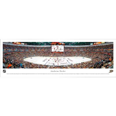 (Frameworth Anaheim Ducks Panoramic Picture)