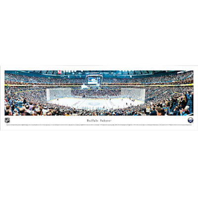 (Frameworth Buffalo Sabres Panoramic Picture)