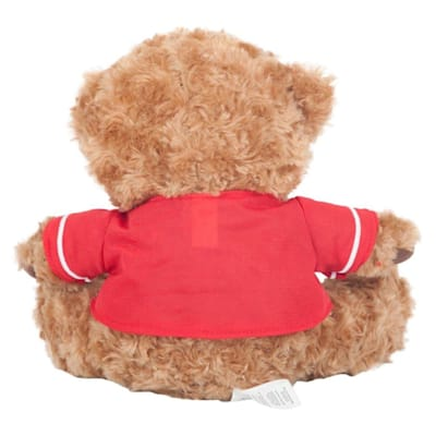 (Detroit Red Wings 10 Inch Bear Team Jersey)