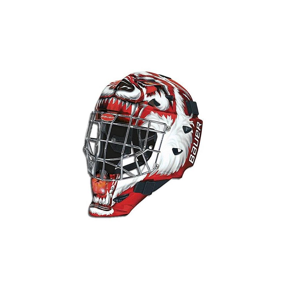 Bauer Profile 2500 Painted Goalie Mask - Junior   Pure Hockey Equipment