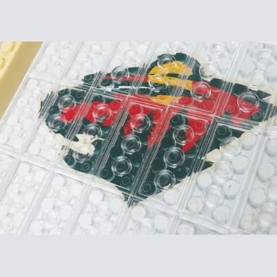 Authentic Team Logo (OYO Sports NHL Team Buildable Backyard Rink)