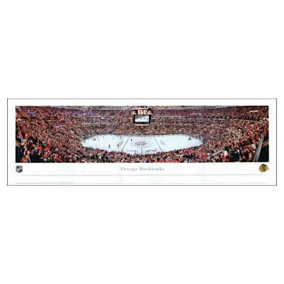 (Frameworth Chicago Blackhawks Panoramic Picture)