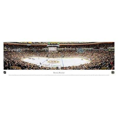 (Frameworth Boston Bruins Panoramic Picture)