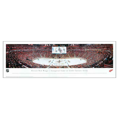 (Frameworth Detroit Red Wings Panoramic Picture)