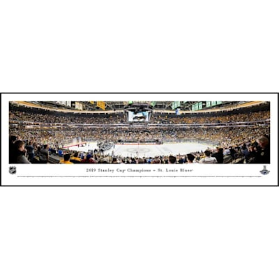 (St. Louis Blues Stanley Cup Panorama Plaque)