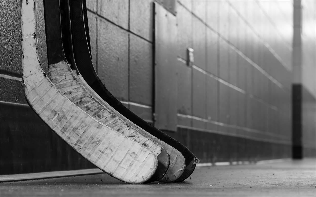hockey stick blade curves